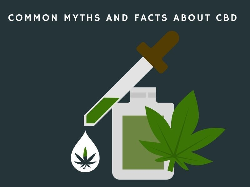 Common myths and facts about cbd
