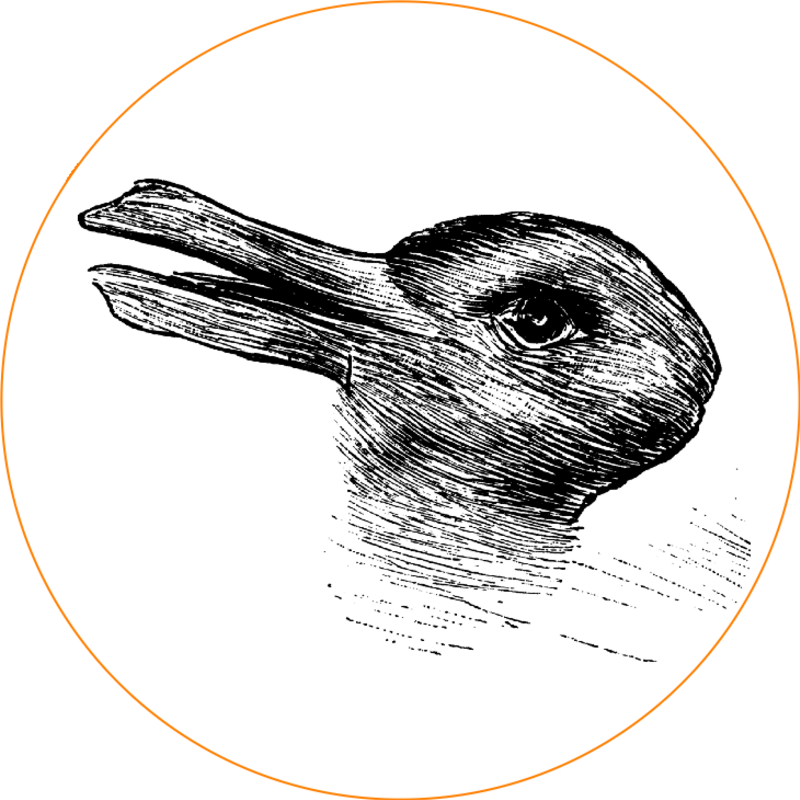 Duck rabbit ii